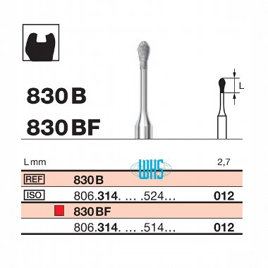burs dental micro 1
