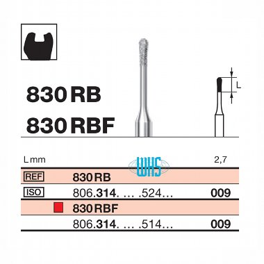 burs dental micro 2