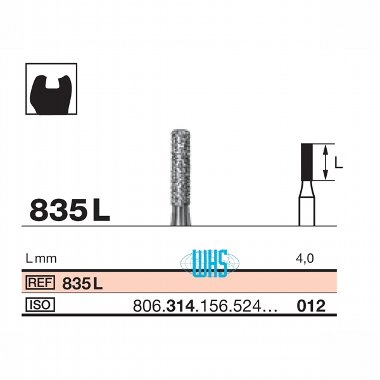 burs dental diamond 31